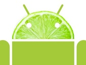 Google hint naar Android Key Lime Pie op Google I/O