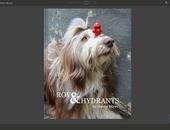 Blurb brengt interactief e-book