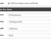 pfSense: Accesspoint, portforwarding en VPN instellen